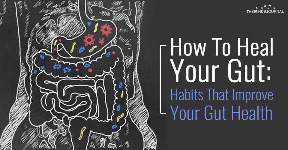 How To Heal Your Gut: Habits That Improve Your Gut Health