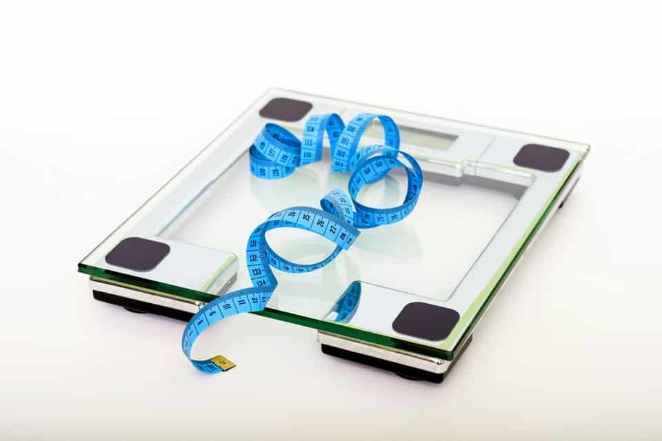Ultimate Calorie Portion You Must Take For Weight Loss