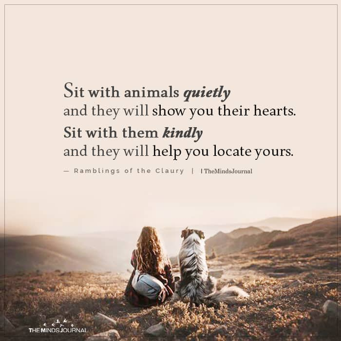 Sit With Animals Quietly