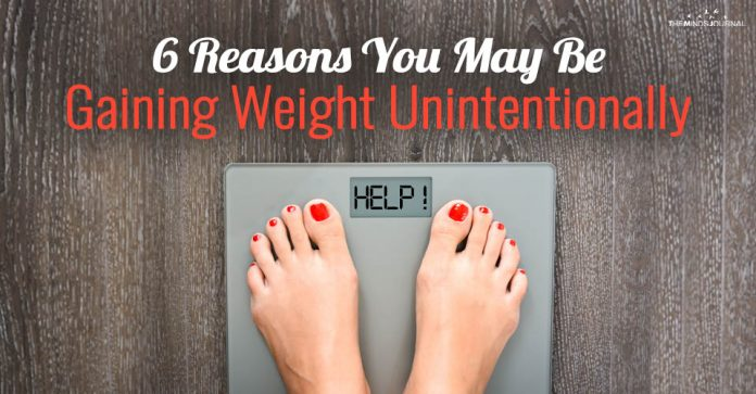 6 Reasons You May Be Gaining Weight Unintentionally: The Science Behind Obesity
