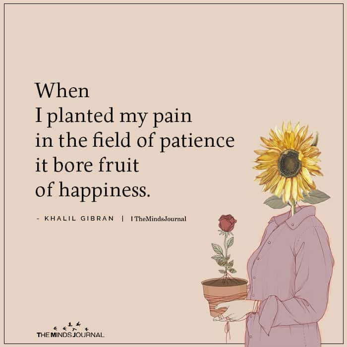 When I Planted My Pain In The Field Of Patience