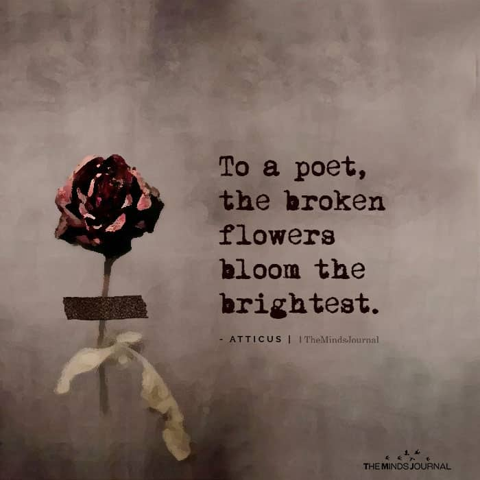 To A Poet, The Broken Flowers Bloom The Brightest