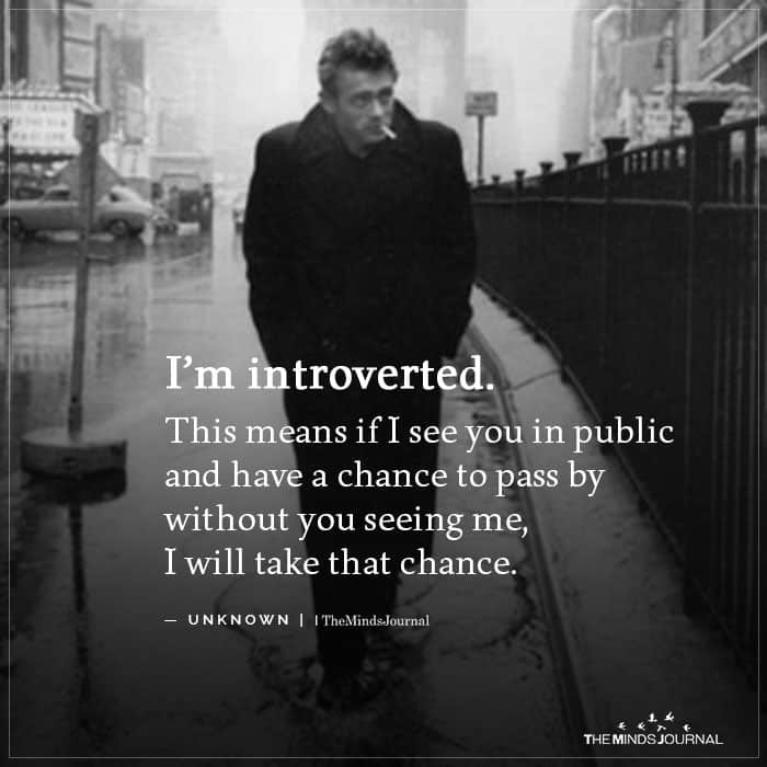 I'm Introverted, This Means If I See You In Public