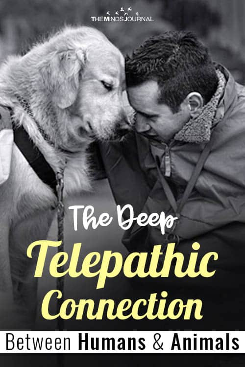 Deep Telepathic Connection Between Humans and Animals pin