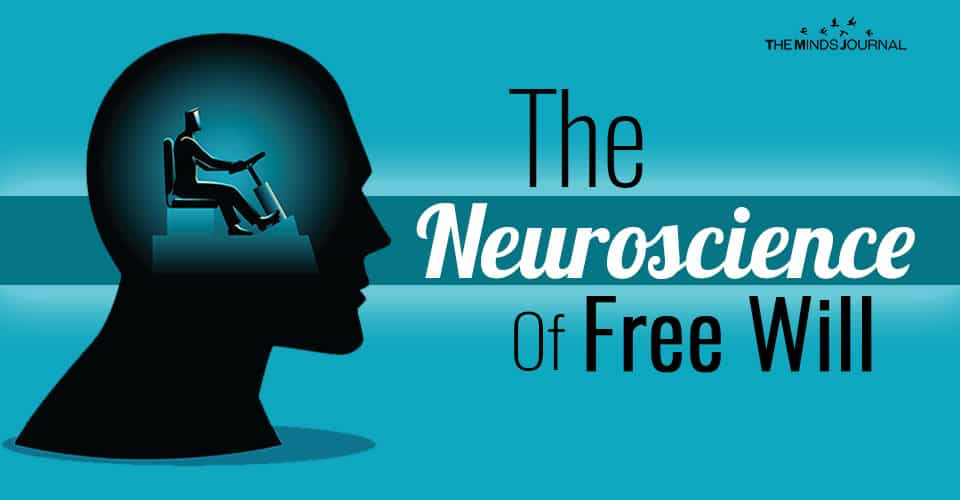 The Neuroscience of Free Will: Everything You Need To Know