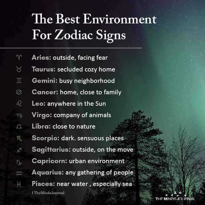 The Best Environment For Zodiac Signs