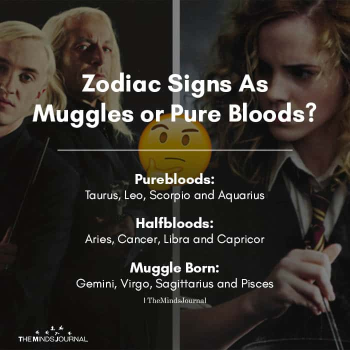 Zodiac Signs As Muggles or Pure Bloods