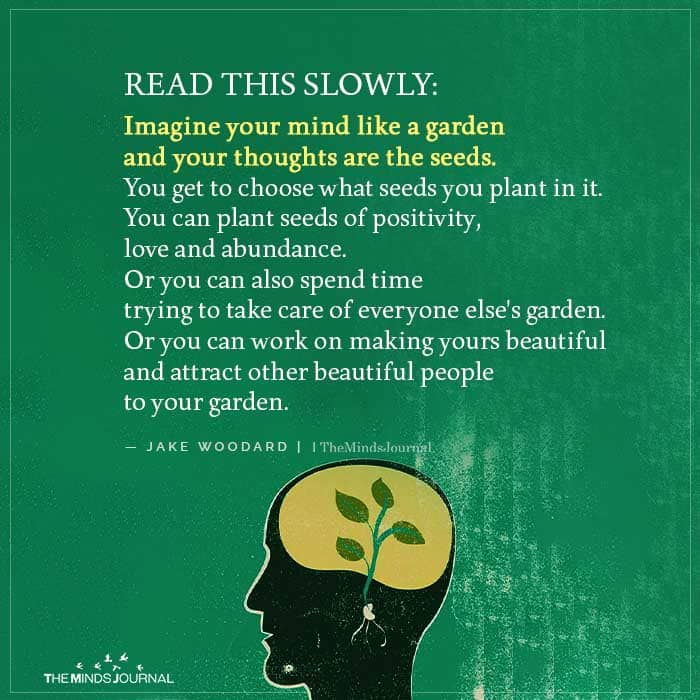 Imagine your mind like a garden