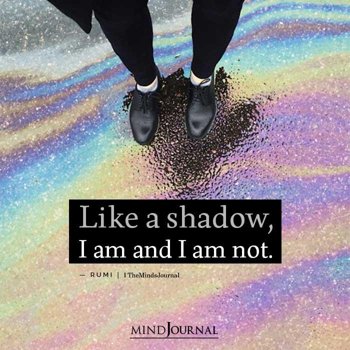 Like a shadow I am and I am not