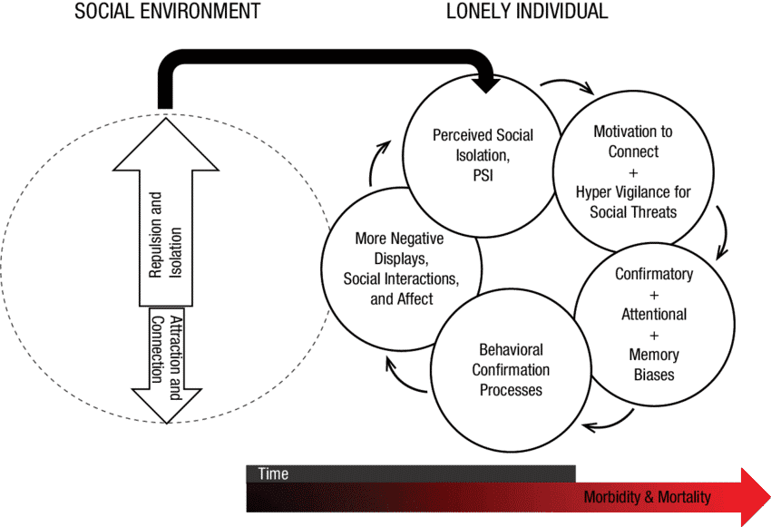 Loneliness affects social cognition