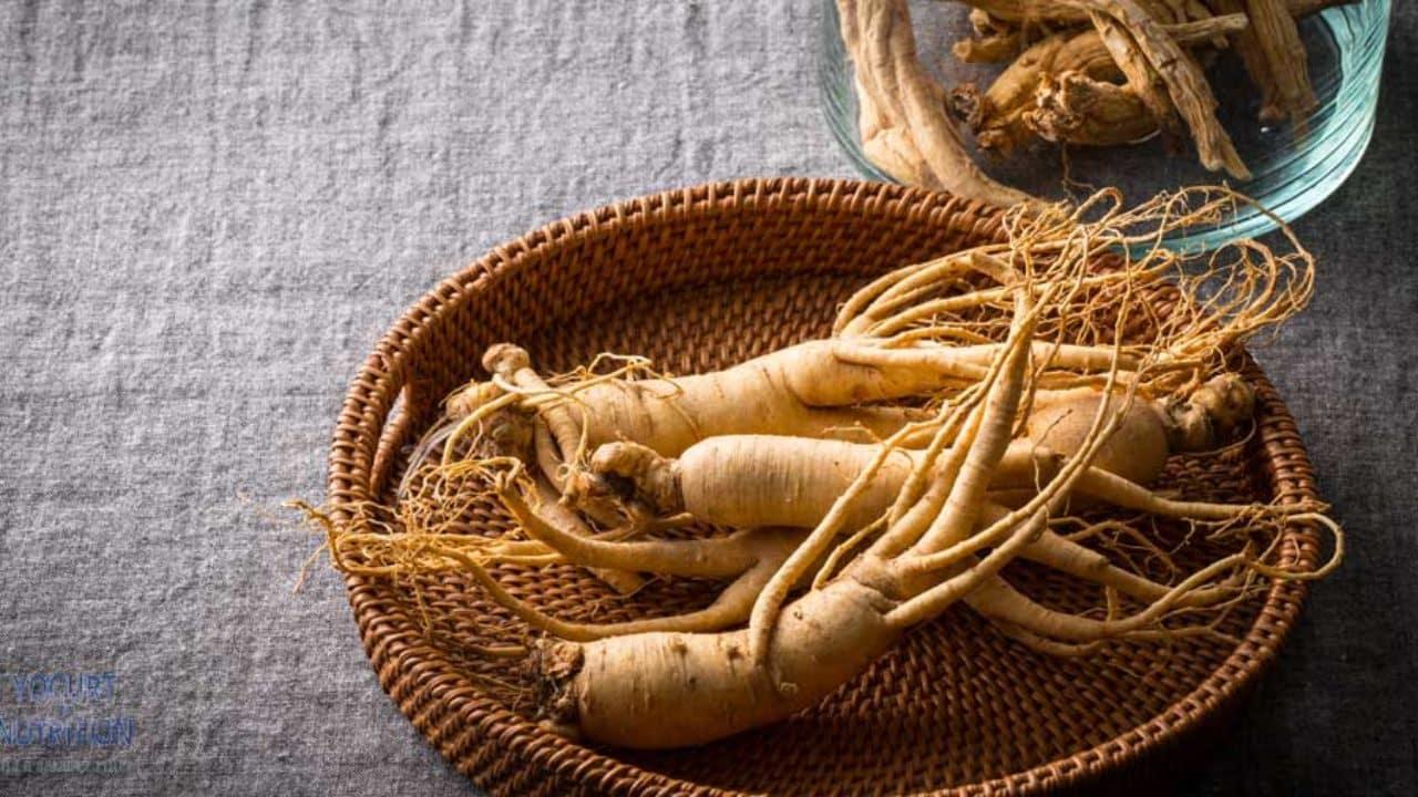 Herbs for brain -  Ginseng