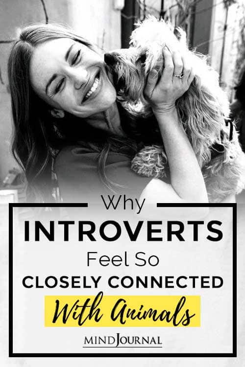 Introverts Feel Closely Connected Animals Pin
