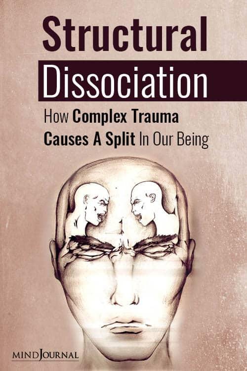 Structural Dissociation Complex Trauma Causes Split pin