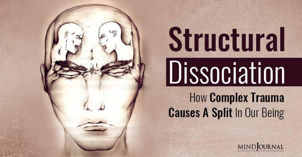 Structural Dissociation Complex Trauma Causes Split