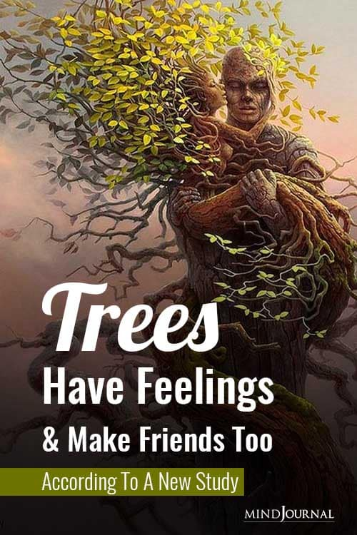 Trees Have Feelings and Make Friends Too According To A New Study Pin