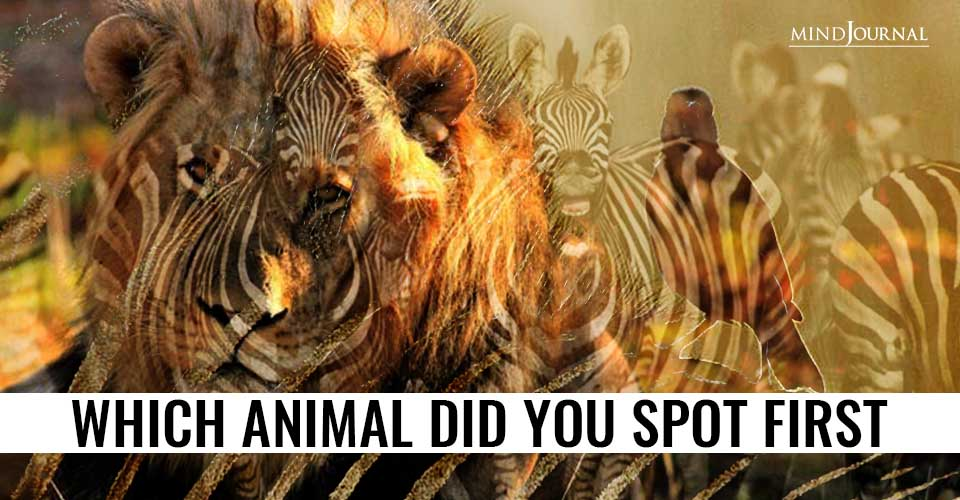 Animal Spot First Reveals Kind of Person You Are