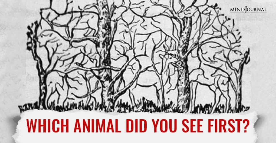 Animal Personality Test Says Lot About You