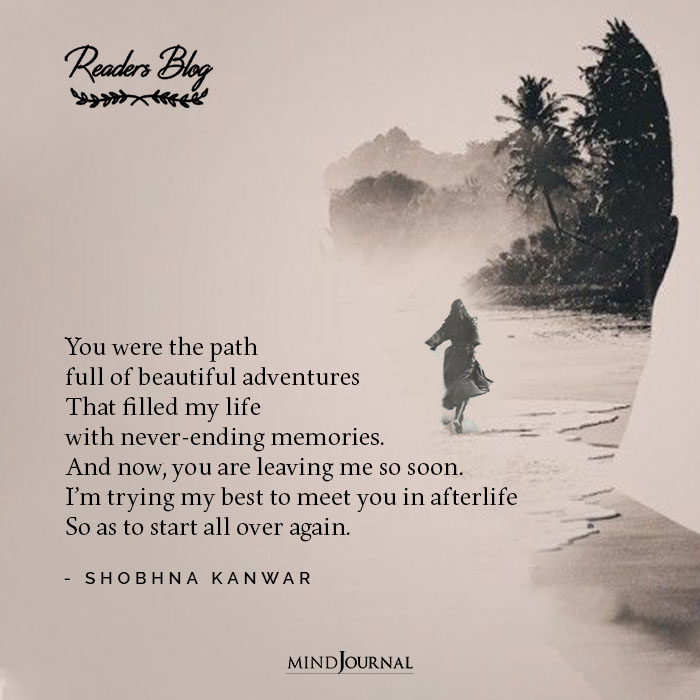 Path Full Beautiful Adventures