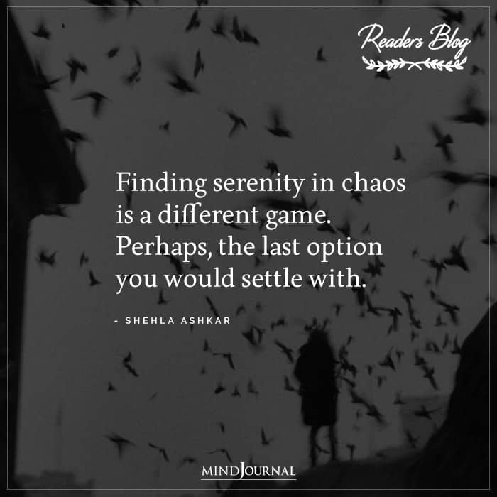 Finding Serenity In Chaos