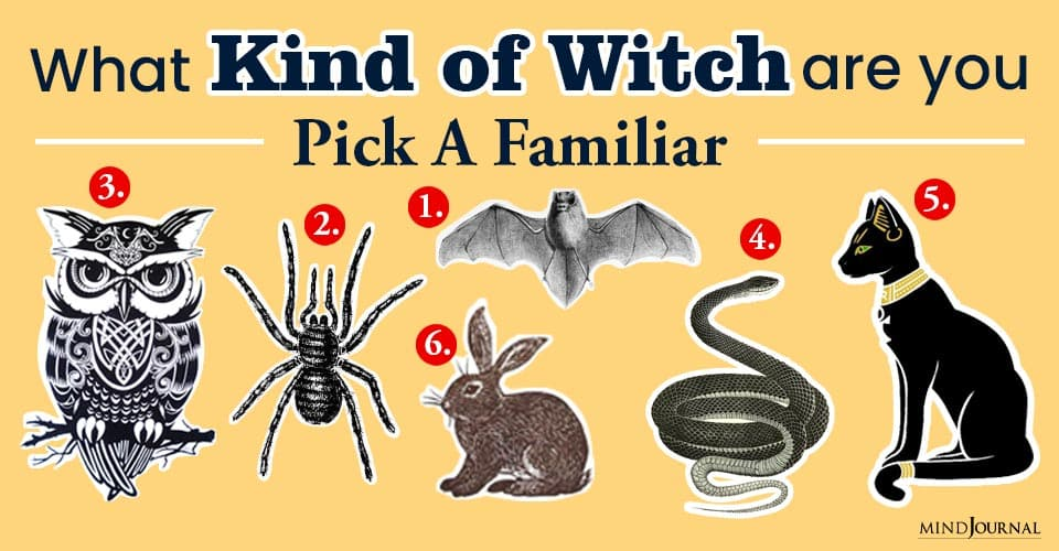Kind Witch Pick Familiar Find Out