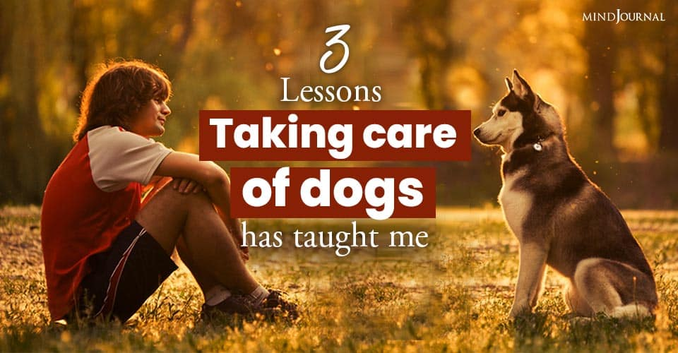 Lessons Taking Care Dogs Taught Me