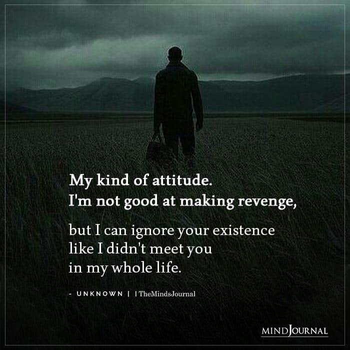 My Kind Attitude Im Not Good Making Revenge