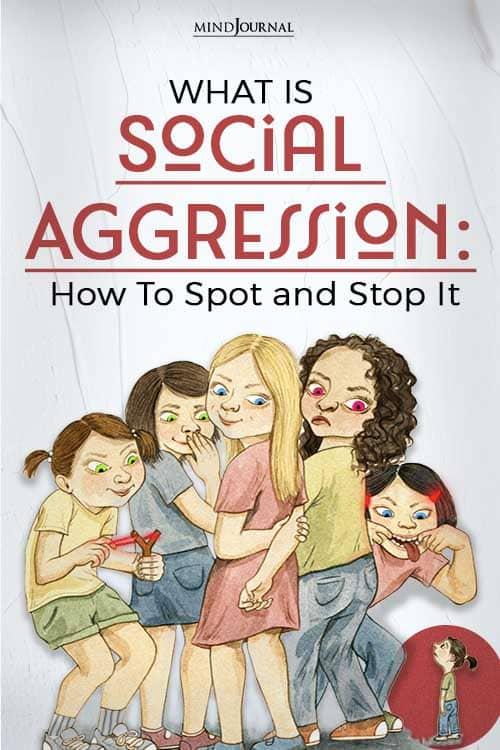 what is social aggression pin