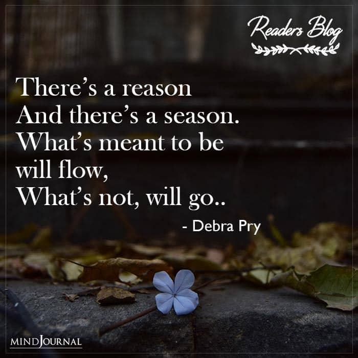 There's A Reason And There's A Season