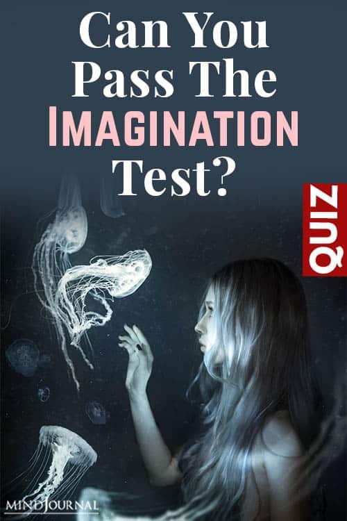 Pass Imagination Test pin