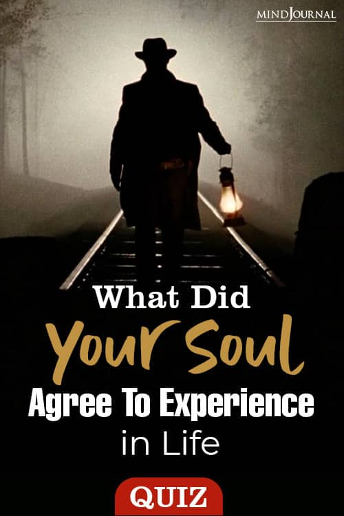 Soul Agree Experience In Life pin
