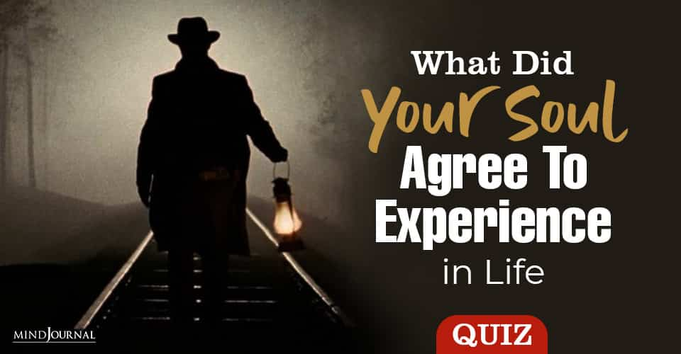 Soul Agree Experience In Life