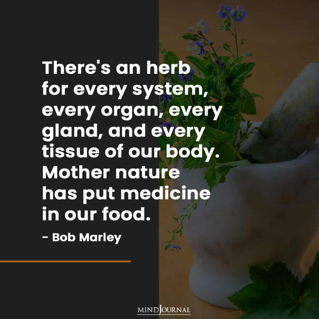 There's an herb for every system.