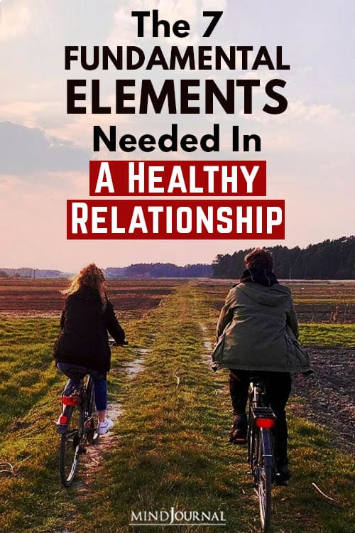 fundamental elements in healthy relationship Pin