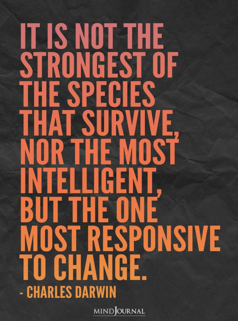 It is not the strongest of the species.