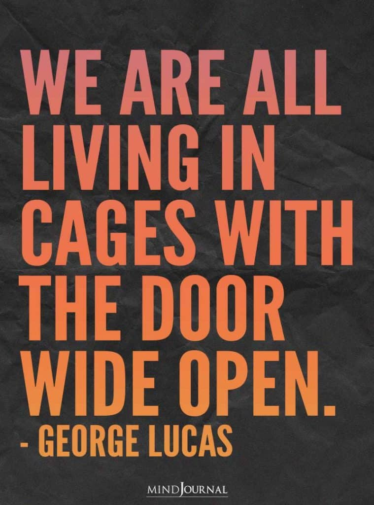 We are all living in cages with the door wide open. - George Lucas