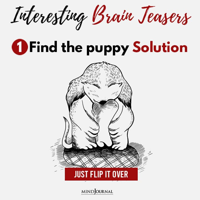 Brain Teasers Know Sharp Eyes Find puppy solution