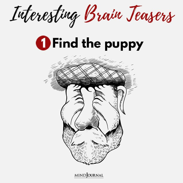 Brain Teasers Know Sharp Eyes Find puppy