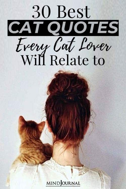 Cat Quotes Every Cat Lovers Will Relate Pin
