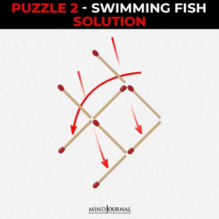 Matchstick Puzzles Test Logic Skills swimming fish solution