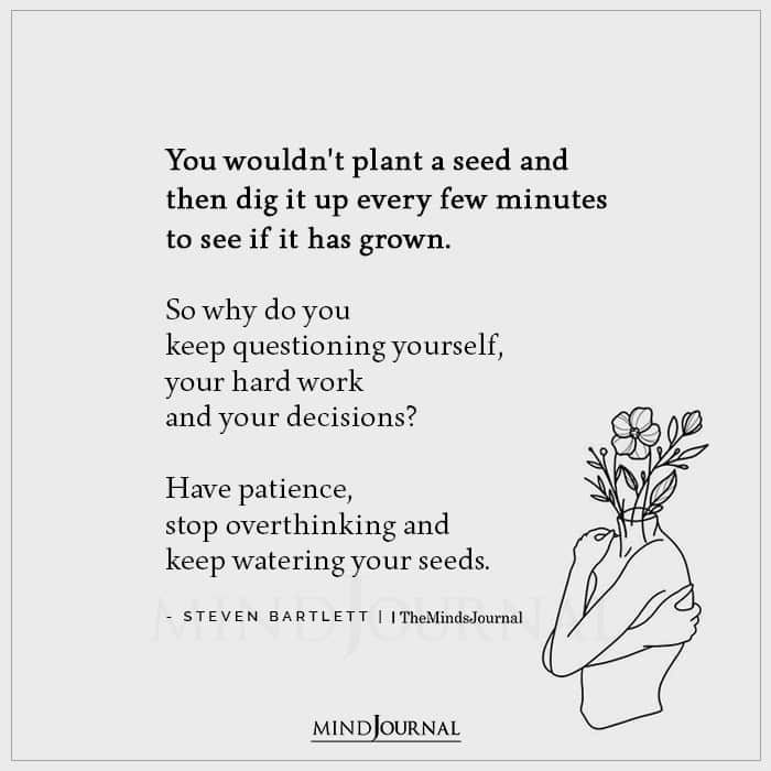 You Wouldnt Plant A Seed And Then Dig It Up