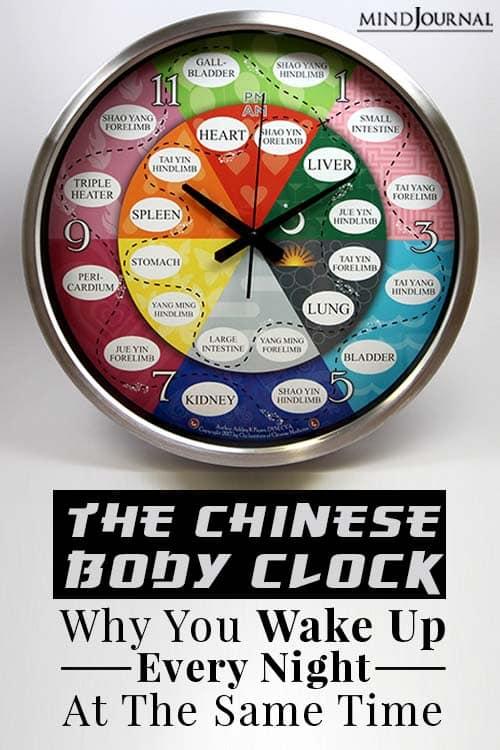 Chinese body clock  pin