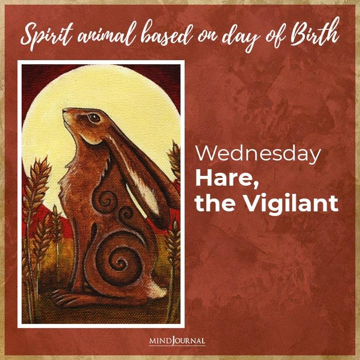 sacred spirit animal wednesday