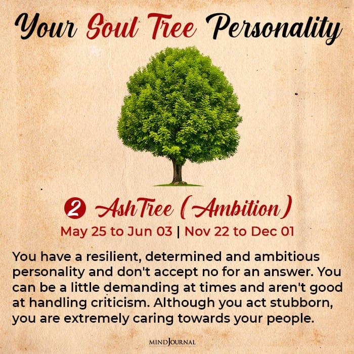 soul tree astrology ash