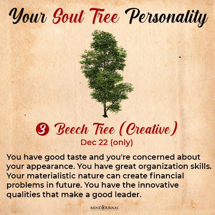 soul tree astrology beech