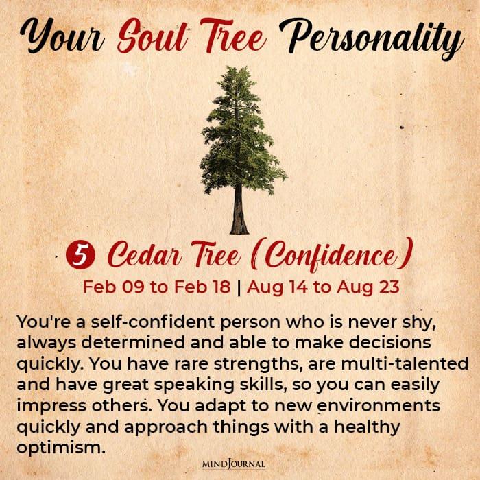 soul tree astrology cedar