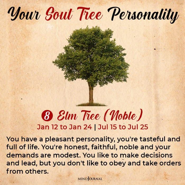 soul tree astrology elm