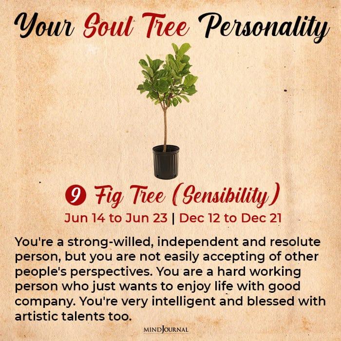 soul tree astrology fig