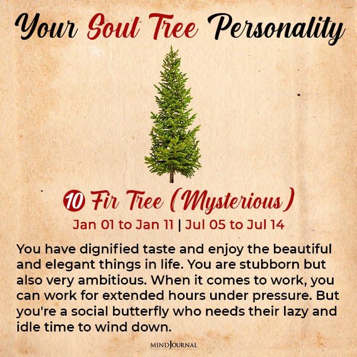soul tree astrology fir