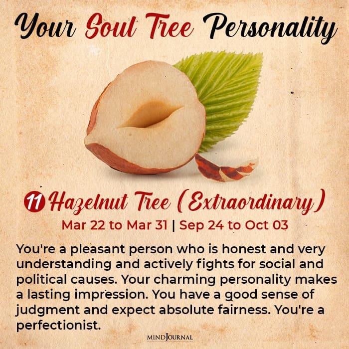 soul tree astrology hazelnut