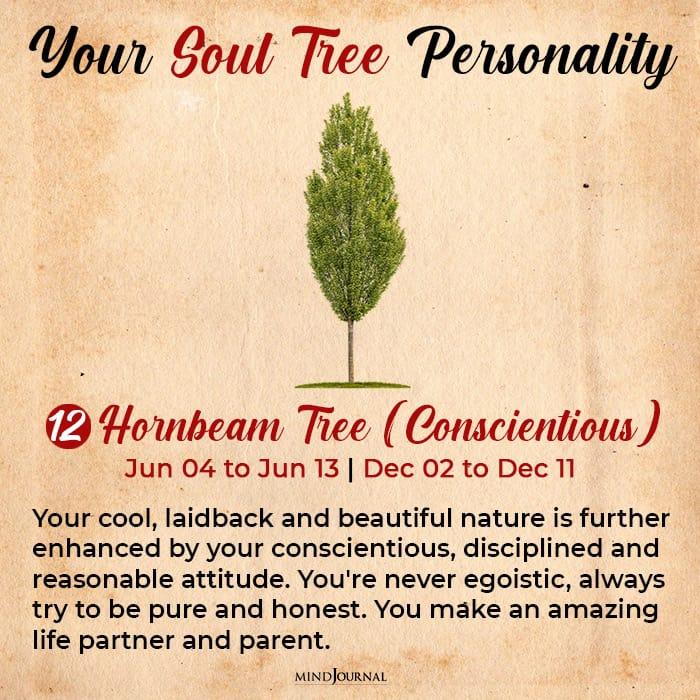 soul tree astrology horn